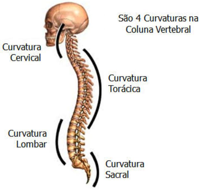 uncoartrose coluna cervical