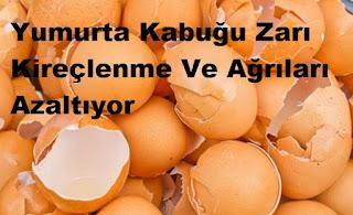 Yumurta Kabuğu Zarı Kireçlenme Ve Ağrıları Azaltıyor