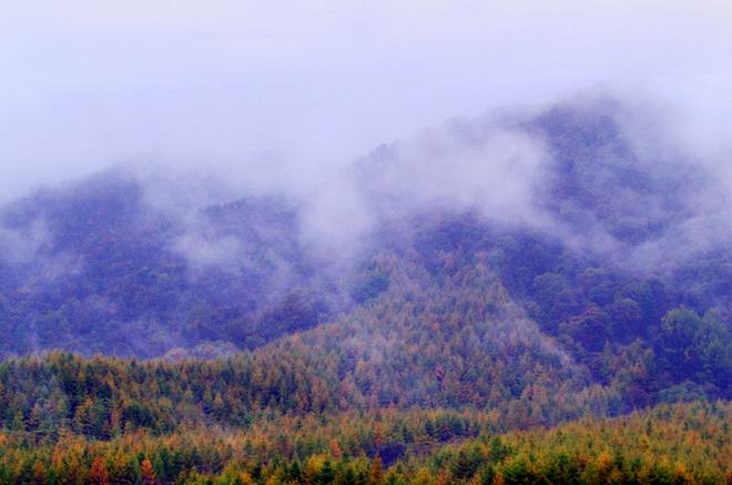 Dreamlike Southern Yangtze - Guangwu Shan Mountain