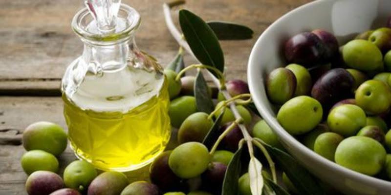 Le Maroc possède 1 millions d'hectares d'oliviers et devient 5e producteur mondial.