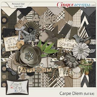 Carpe Diem by Little Rad Trio