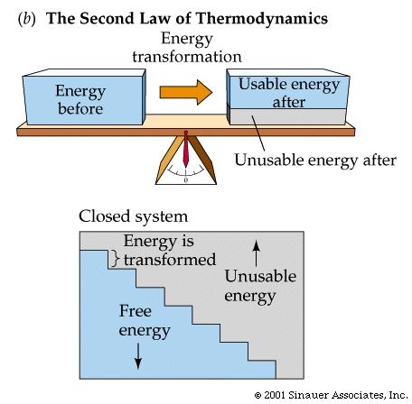 epub Electron Holography