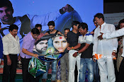 Rani Gari Banglow Audio Launch-thumbnail-11