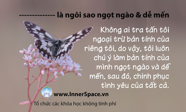 TOI-LA-NGOI-SAO-BINH-YEN-NGOT-NGAO-DE-MEN