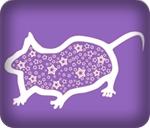 tahun shio tikus