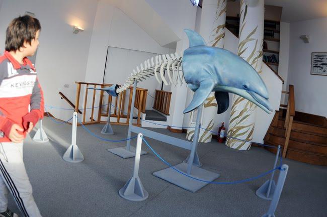 Museo Ecocentro educación estudiantil en Puerto Madryn