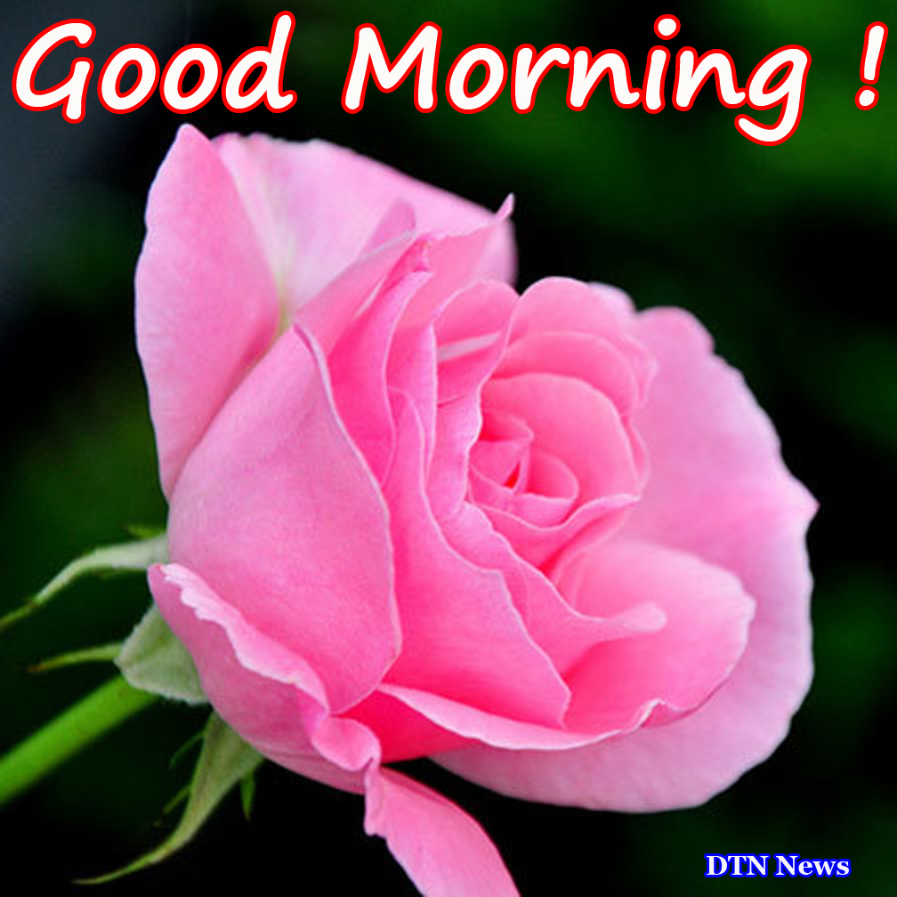 Good Morning Jan : Pictures of the day good morning it s wednesday