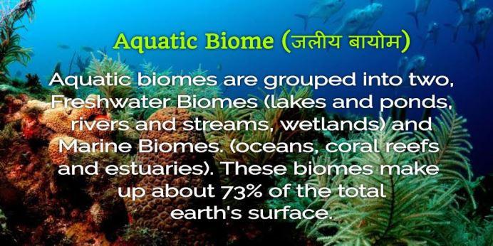 Jaliy Bayom (Aquatic Biome)