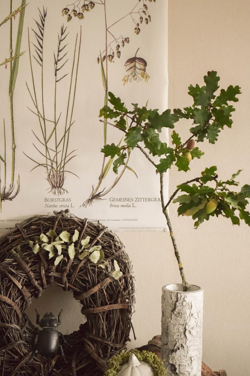 Deko Herbst für Konsole und Sideboard mit Eicheln. Herbstdeko Dekoidee Wohnzimmer Dekoration eiche eicheln botanisch natuerlich dekorieren