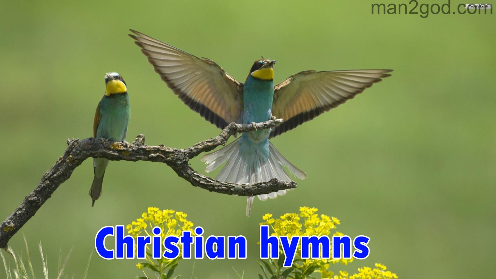 Christian Best hymns Free Download - Grace Of God