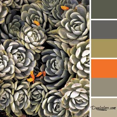 Variedad En Color-Color 45