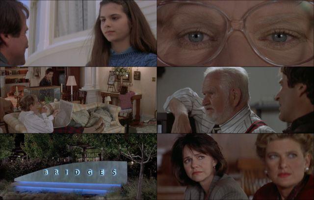 Papá por siempre (1993) HD 1080p Latino Dual