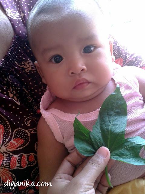 mengatasi bisulan pada bayi secara alami
