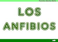 http://cplosangeles.juntaextremadura.net/web/cuarto_curso/naturales_4/anfibios_4/anfibios_4.html