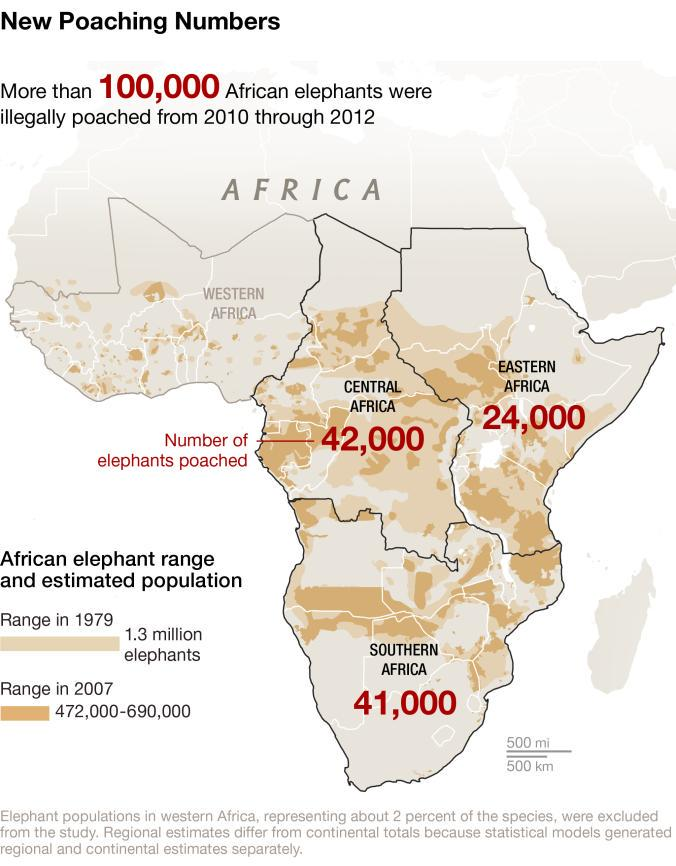 More than 100,000 African elephants were illegally poached from 2010 through 2012