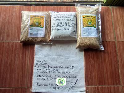 Benih pesana pertama   5,5 kg  KURNIA Cianjur, Jabar.   (Sebelum Packing)