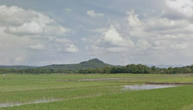 Gunung Taruwongso