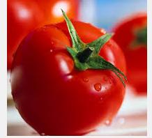 Tomat Dapat Mencegah Kanker Prostat ?