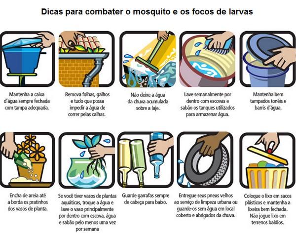 O verão chegou e a atenção deve ser redobrada com a dengue