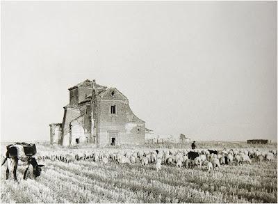 Abuelohara Leganés b/n - XII