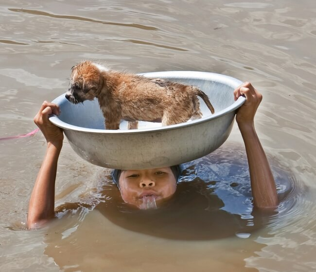 22 Stirring Pictures That Made Even The Toughest Of Us Cry - A girl saving a puppy during a harsh storm.