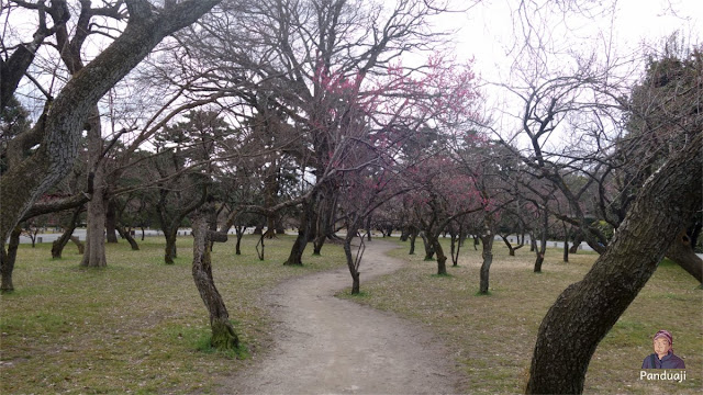 Taman di Imperial Palace
