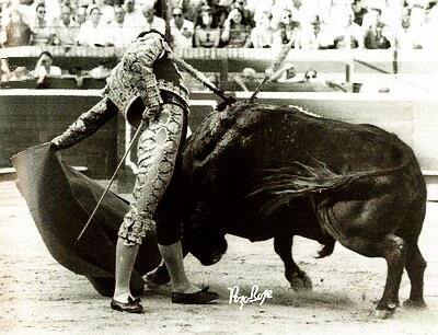 Guillermo Sureda Molina bilaketarekin bat datozen irudiak