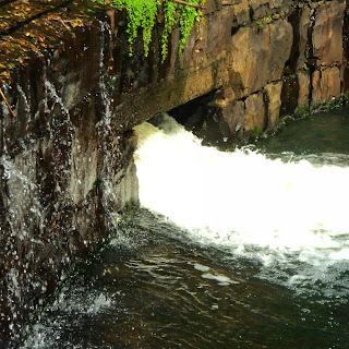 Fluxo de Água na Represa, Parque do Caracol