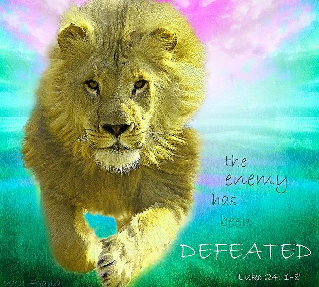 enemy defeated bonus