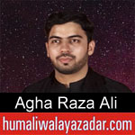 https://www.humaliwalyazadar.com/2018/09/agha-raza-ali-nohay-2019.html