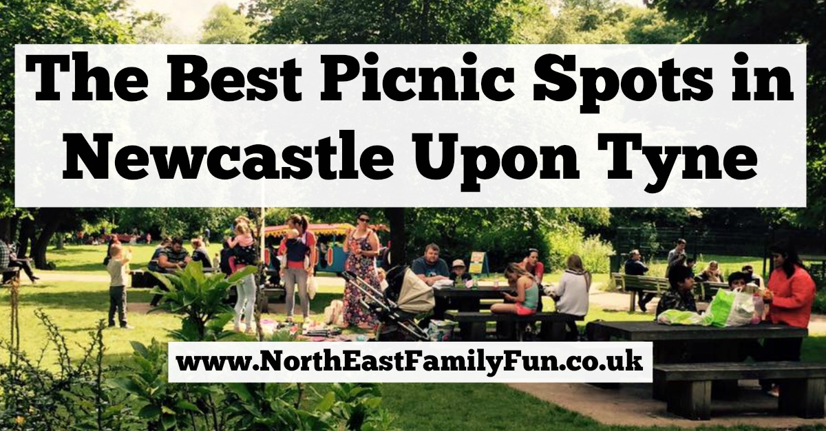 The Best Picnic Spots in Newcastle Upon Tyne