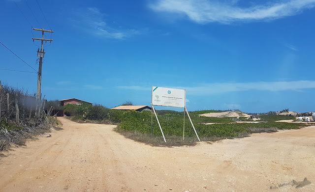 Reerva Biológica Santa Isabel, Pirambu, Sergipe, Projeto Tamar