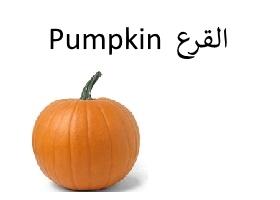 القرع : Pumpkin