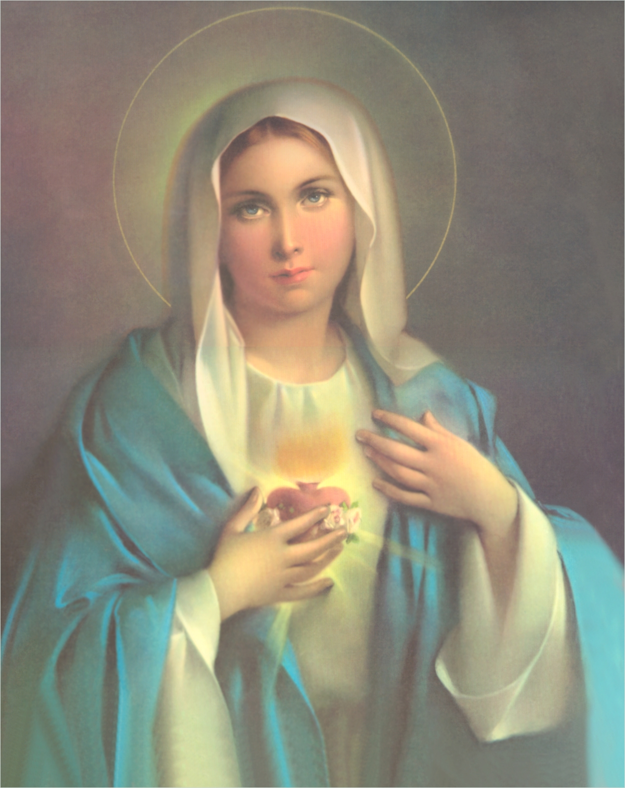 Infallible Catholic: The Blessed Virgin Mary - The New Ark of the Covenant