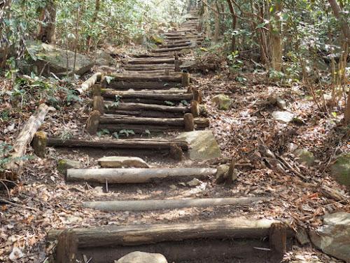 少し傾斜が増して階段