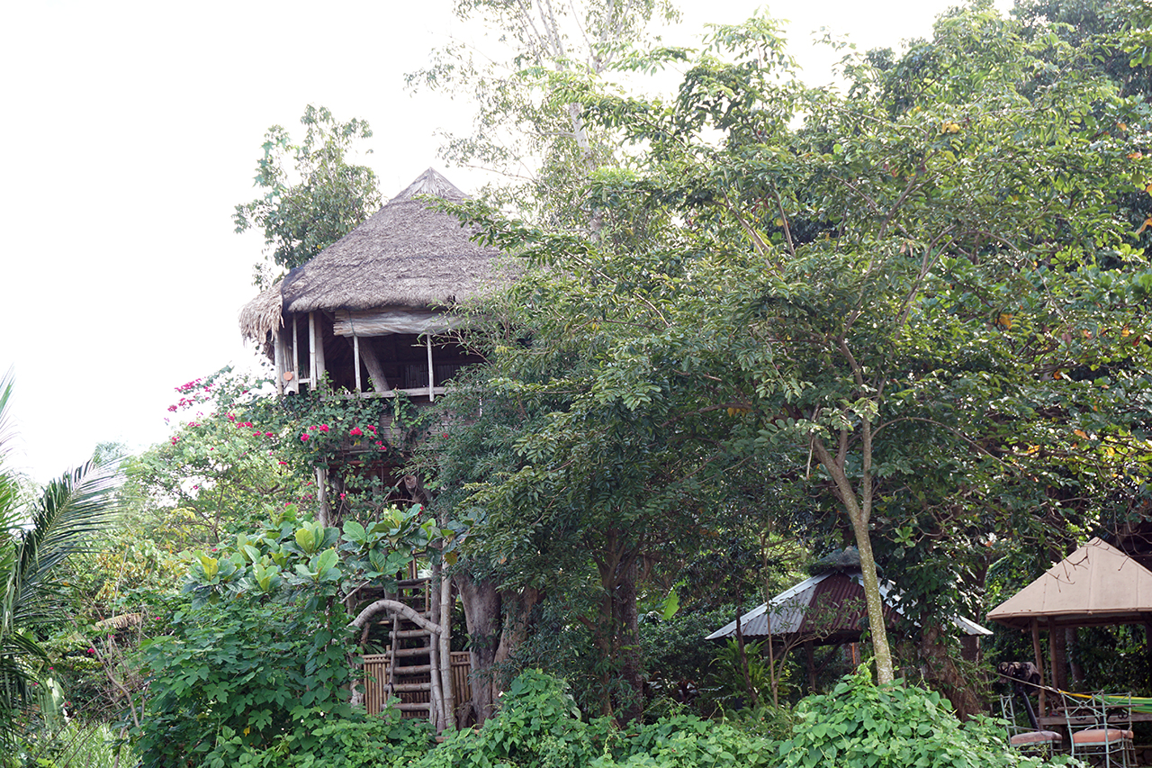 the kapusod treehouse