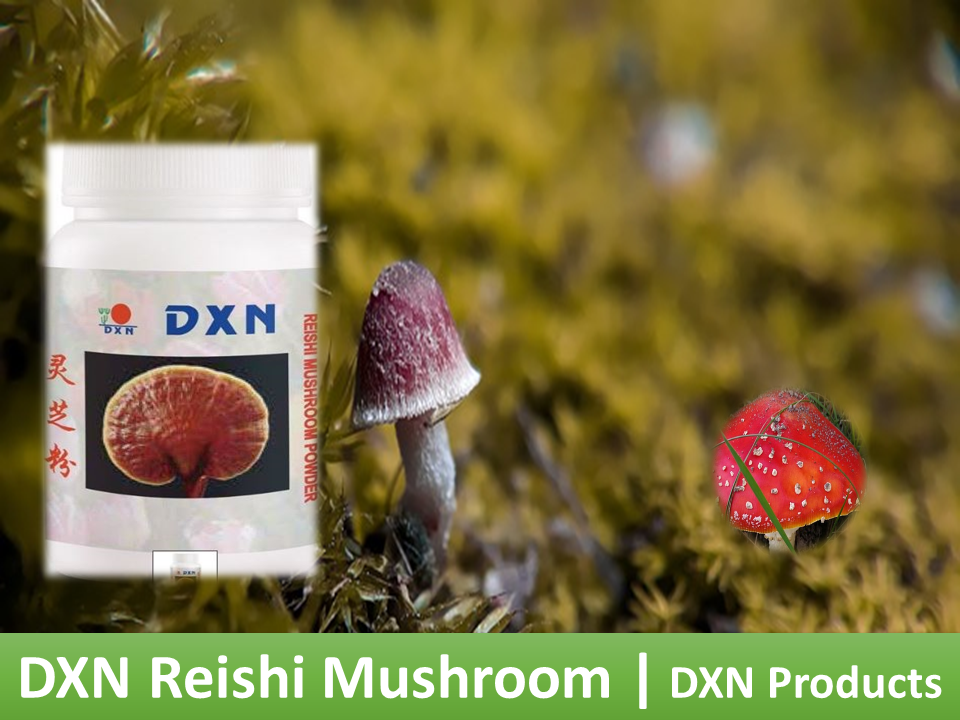 DXN make billionaires with DXN products||| DXN mushroom
