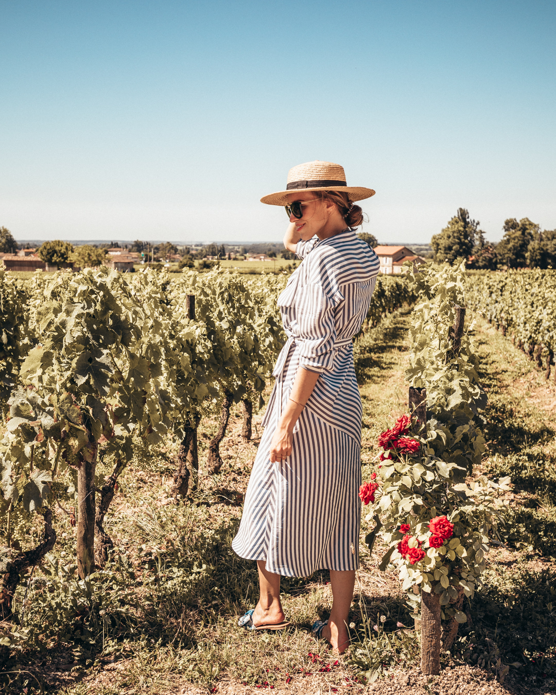 bordeaux winery wine yard grapes