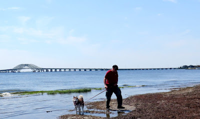 Gardiner County Park and Beach in Bay Shore Long Island, NY opens up to the Great South Bay  #dogfriendly