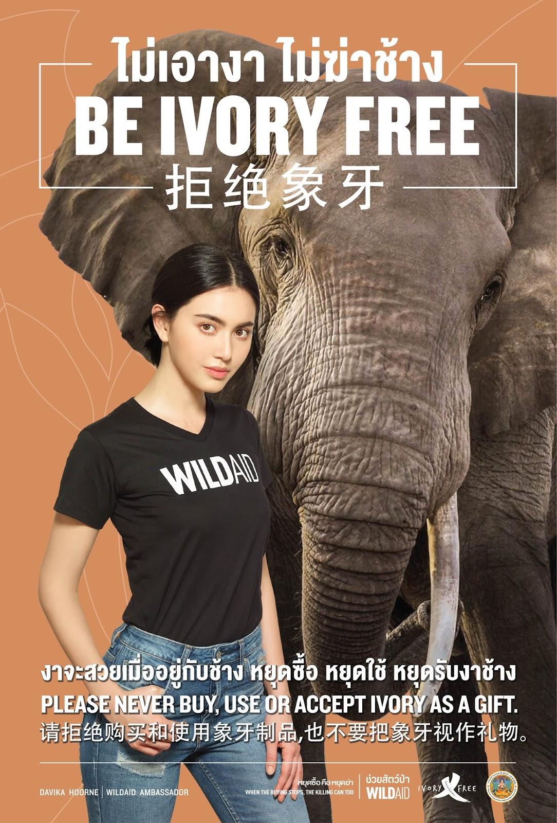 ใหม่ ดาวิกา ร้องเพลงช้าง ชวนคนไทย #ไม่เอางาไม่ฆ่าช้าง กับองค์กรไวล์ดเอด และกรมอุทยานฯ