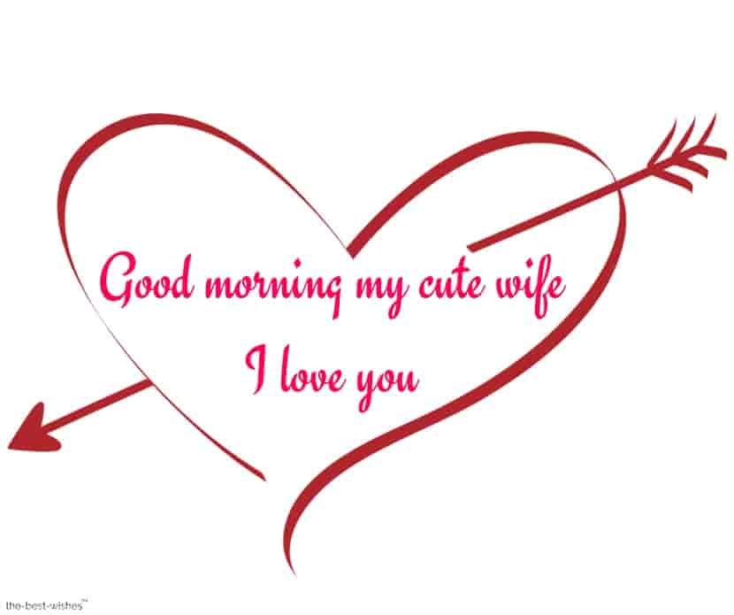 good morning my cute wife i love you