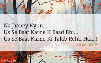 dear diary urdu poetry, love quotes, thoughts and silent words 4