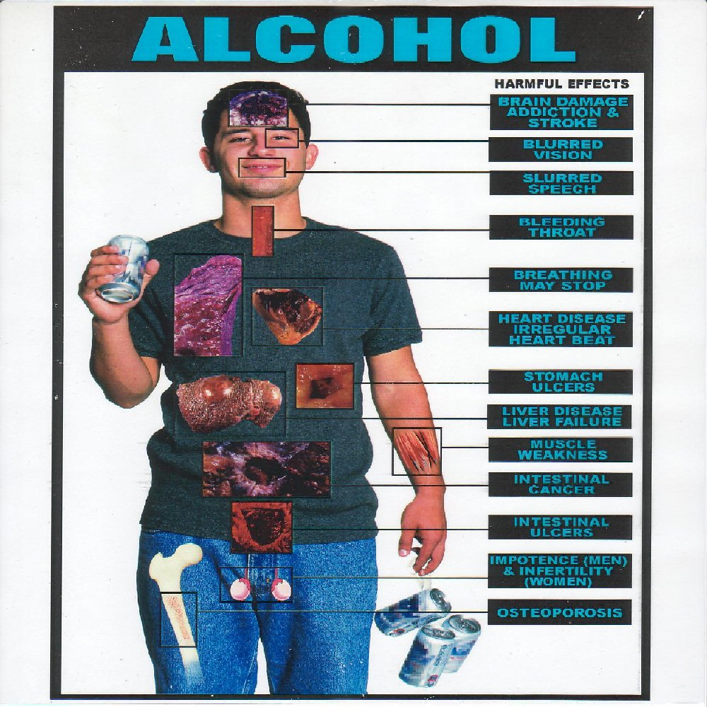 Alcohol And Body Fat 29