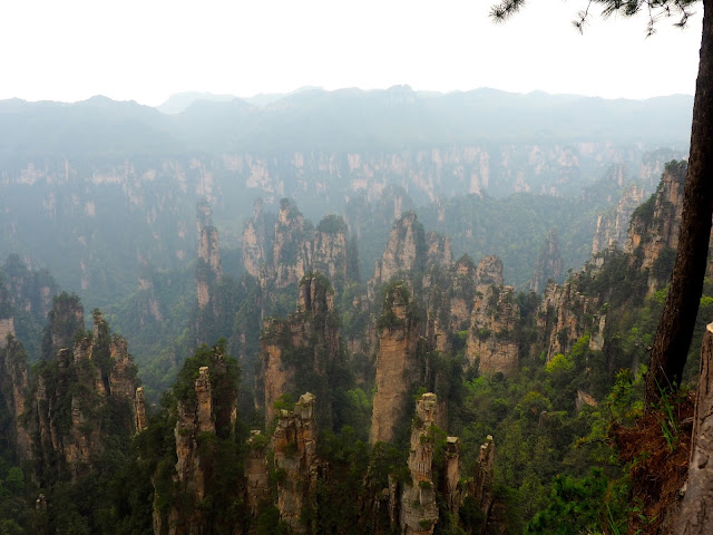 Avatar Mountains in Zhangjiajie National Park, China