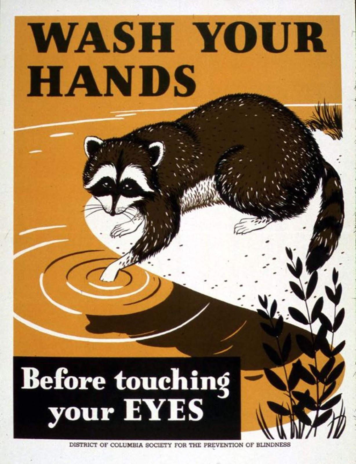 "From the USA: ""Wash your hands before touching your eyes"""