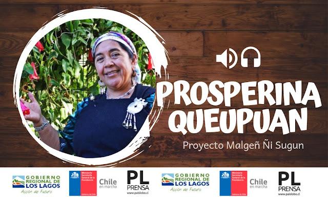 Dirigenta Mapuche Prosperina Queupuan - Malgeñ ñi sugun | Podcast 06