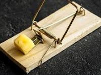Kisah Motivasi - Sebuah Perangkap Tikus