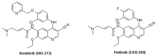 Structure of HKI-272 and EKB-569