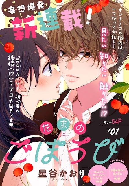 Nova série de Kaori Hoshiya estréia na Betsuma