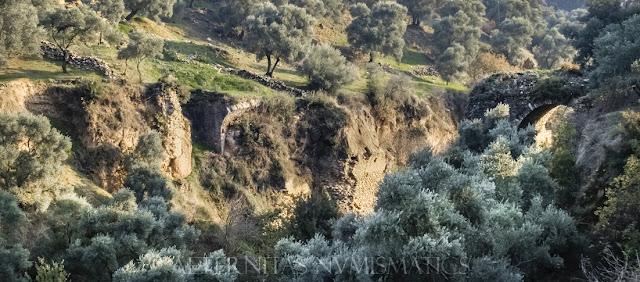 Ruinas del puente sobre la quebrada del arroyo Eudón